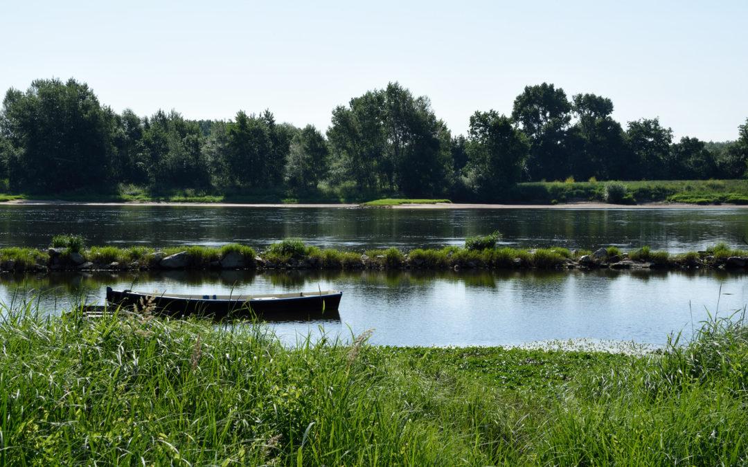 Au fil de la Loire – 5. En conclusion, encore quelques merveilles…