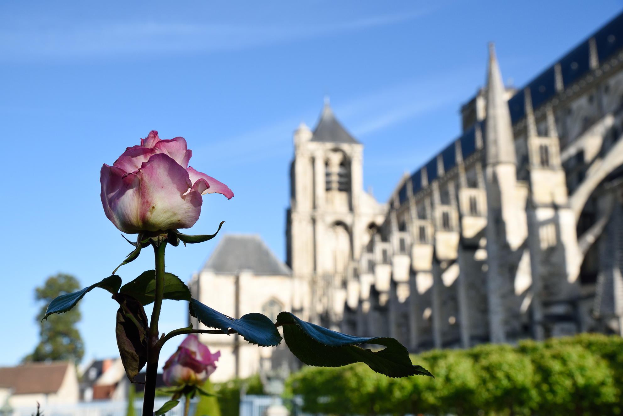 Bourges-Bdesmettre